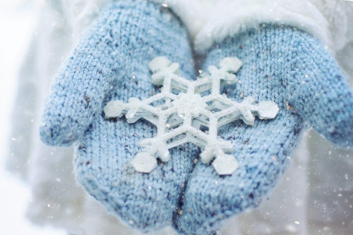 person holding snowflakes decor
