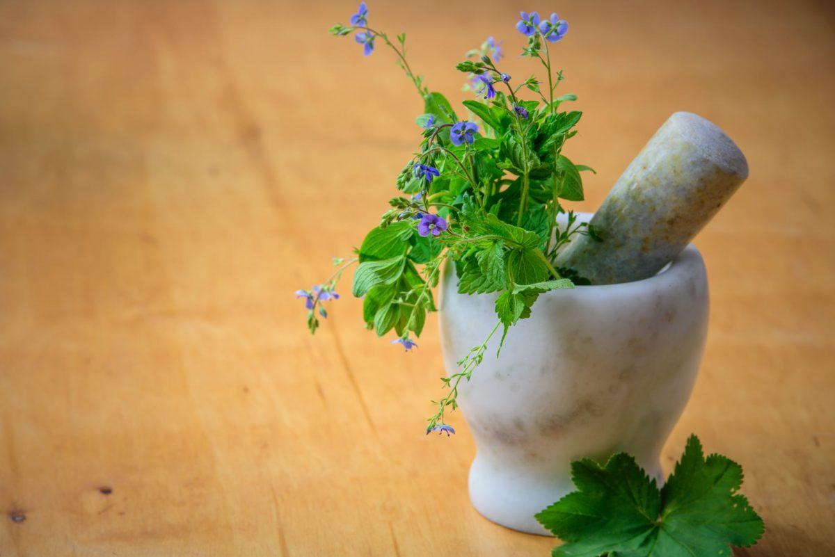 purple petaled flowers in mortar and pestle