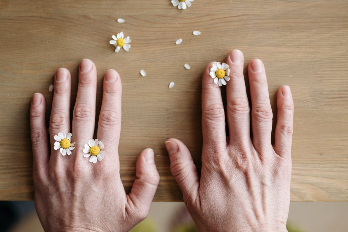 small flowers on hands on wooden surface
